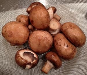 food challenge; mushroom