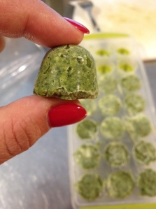 These puppies are easy to remove from the ice tray. Once individually frozen, I place my frozen pesto cubes in a large freezer bag.