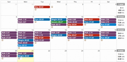 While not all of my workouts are accounted for, this log is a nifty little snap shot of how well I'm doing in July.